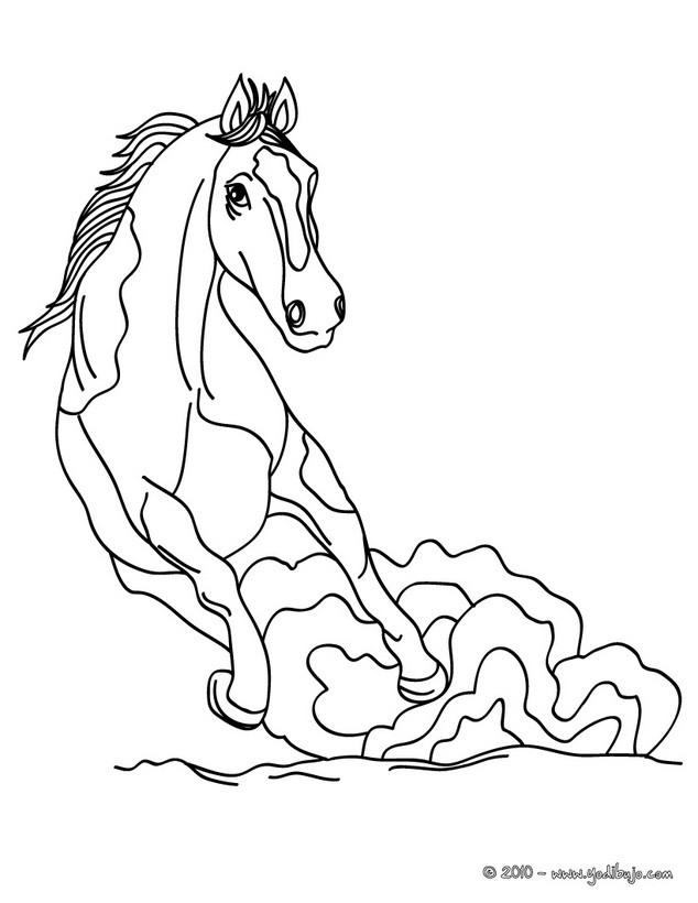 Dibujos para colorear caballo mustang - es.hellokids.com