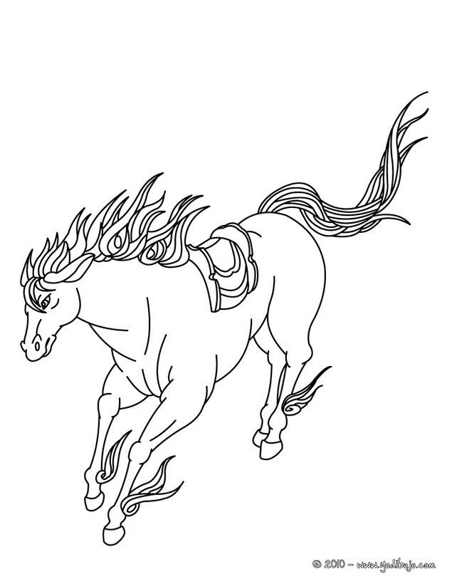 Dibujos para colorear caballo pura sangre arabe - es.hellokids.com