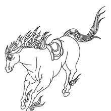 Dibujo CABALLO PURA SANGRE ARABE - Dibujos para Colorear y Pintar - Dibujos para colorear ANIMALES - Colorear CABALLOS - Colorear CABALLOS PURA SANGRE