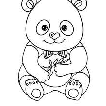 Dibujo bebe OSO PANDA - Dibujos para Colorear y Pintar - Dibujos para colorear ANIMALES - Dibujos ANIMALES SALVAJES para colorear - Dibujos para colorear e imprimir ANIMALES SALVAJES - Colorear OSO PANDA