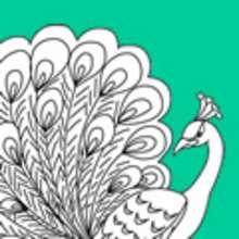 Dibujo para colorear : una PALOMA