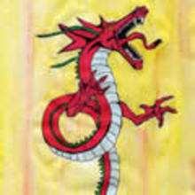 dragón, Dibujos de DRAGONES