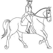 Dibujo de una jinete que adiestra un caballo - Dibujos para Colorear y Pintar - Dibujos para colorear DEPORTES - Dibujos de EQUITACION para colorear - Dibujos de DOMA para colorear