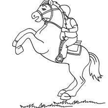 Dibujo de caballo sobre sus patas traseras - Dibujos para Colorear y Pintar - Dibujos para colorear DEPORTES - Dibujos de EQUITACION para colorear - Dibujos de DOMA para colorear