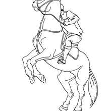 Dibujo de caballo que se niega a responder al jinete - Dibujos para Colorear y Pintar - Dibujos para colorear DEPORTES - Dibujos de EQUITACION para colorear - Dibujos de DOMA para colorear