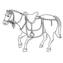 Dibujo para colorear : un caballo con su silla