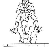Dibujo para colorear : concurso hipico de saltos de obstasculos