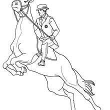 Dibujo para colorear : un jinete a caballo en un concurso de salto de obstaculos