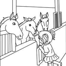 una niña acariciendo caballos en su box