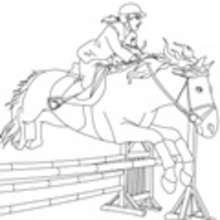 caballo, Colorear SALTO DE OBSTACULOS