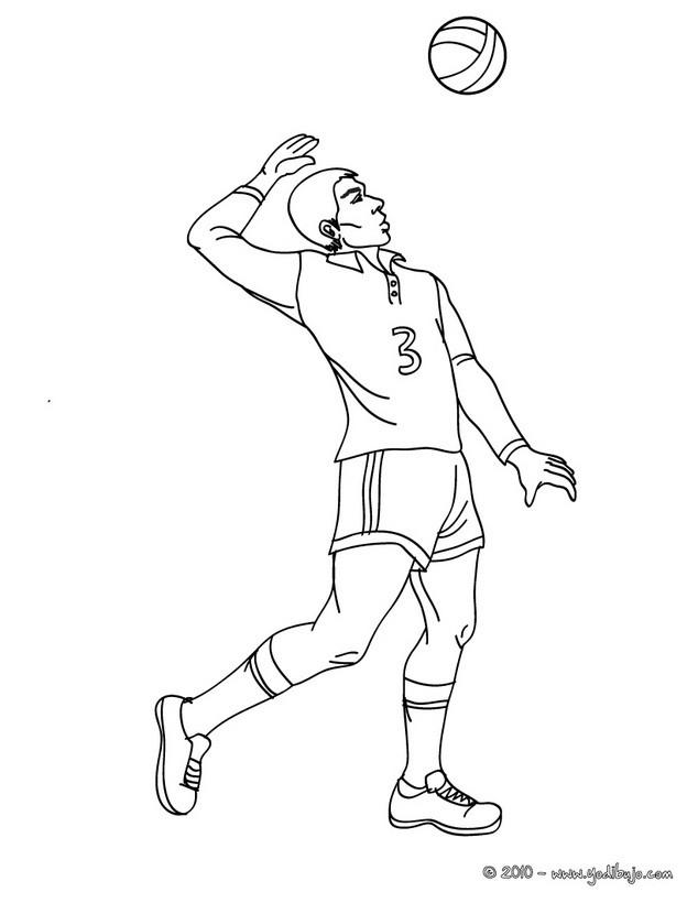 Dibujo De Un Servicio De Voleibol