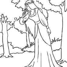Dibujo para colorear : una hada luna en un bosque