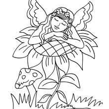 Dibujo para colorear hada durmiendo en una flor - Dibujos para Colorear y Pintar - Dibujos para colorear de FANTASIA - Dibujos para colorear HADAS - Dibujos para colorear HADAS FLORES