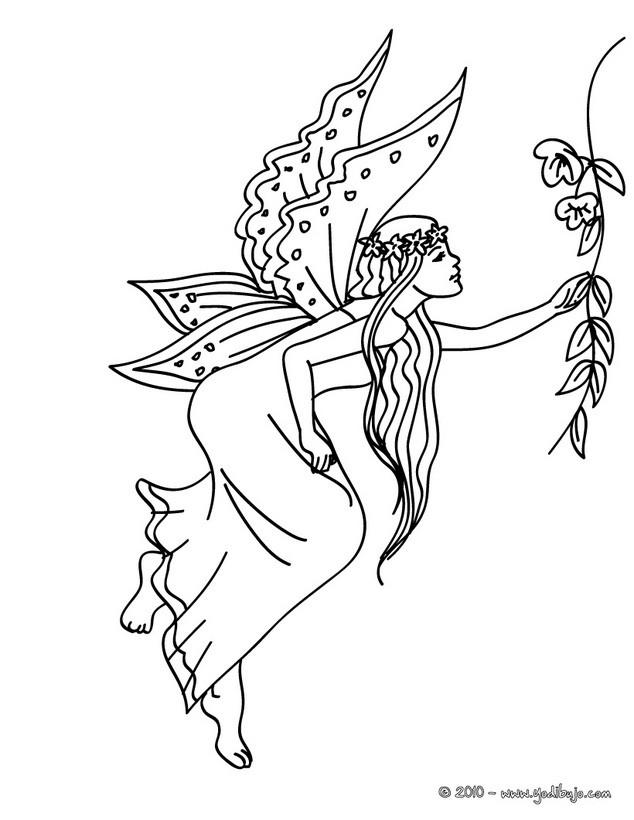 Dibujos para colorear las alas de hada  eshellokidscom
