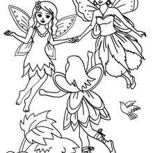 Dibujo de un grupo de hadas con alas para colorear - Dibujos para Colorear y Pintar - Dibujos para colorear de FANTASIA - Dibujos para colorear HADAS - Dibujos para colorear GRUPOS DE HADAS