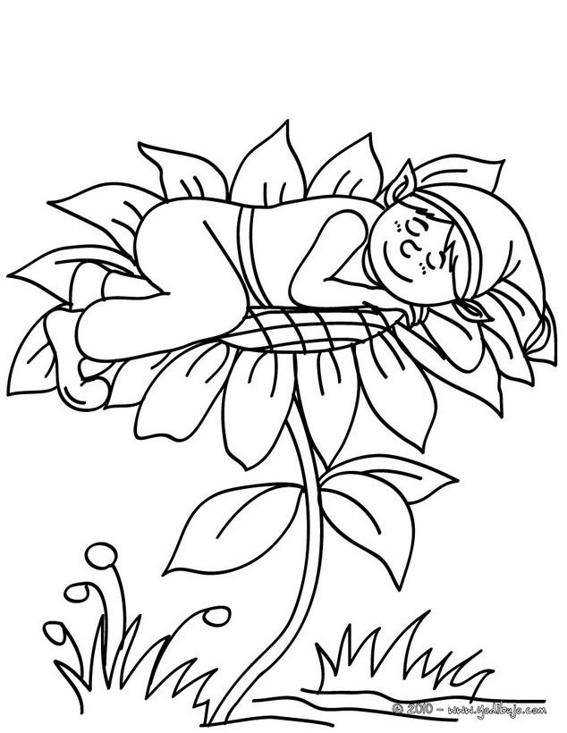 Dibujo de elfo durmiendo sobre una flor para colorear - Colorear ELFOS ...