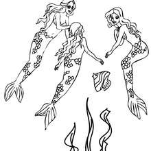 Dibujo para colorear : hermosas sirenas