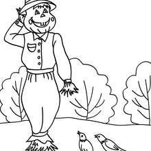 Dibujo jack o lantern con pajaros para colorear halloween - Dibujos para Colorear y Pintar - Dibujos para colorear FIESTAS - Dibujos para colorear HALLOWEEN - Dibujos para colorear JACK O LANTERN HALLOWEEN
