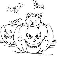 Dibujo para colorear : un campo de calabazas para halloween