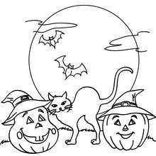 Dibujo para colorear : calabazas y gato negro de halloween