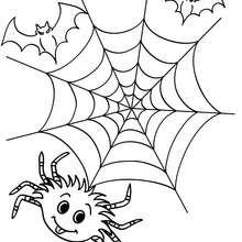 Dibujo para colorear : una telaraña de halloween
