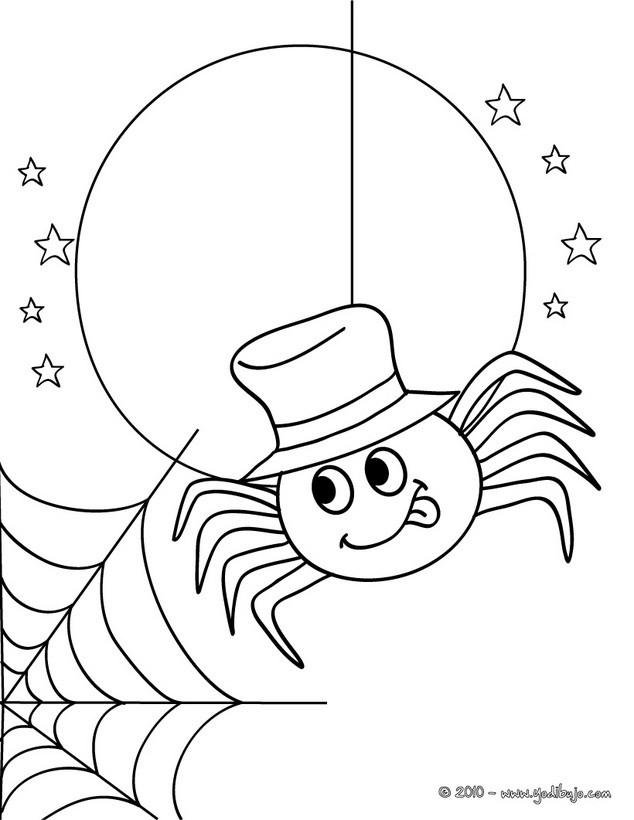 Dibujos para colorear una araa y su telaraa para coloraer