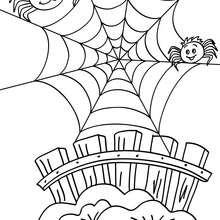 Dibujo para colorear : Arañas y telarañas para halloween