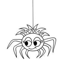Dibujo para colorear : una araña chistosa  Halloween
