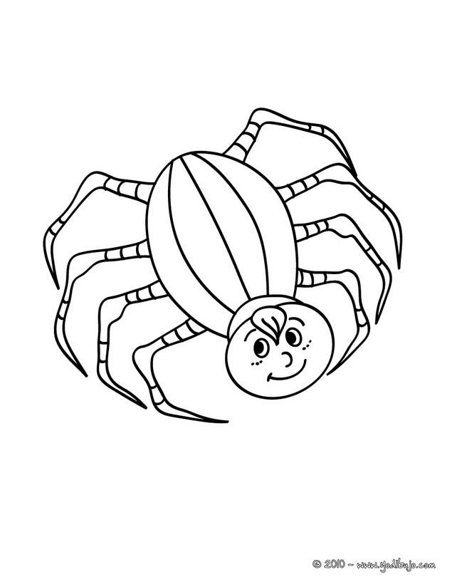 Dibujos para colorear un araa fea  eshellokidscom