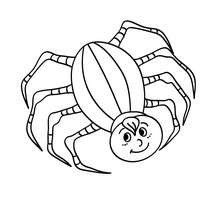 Dibujo para colorear : un araña fea