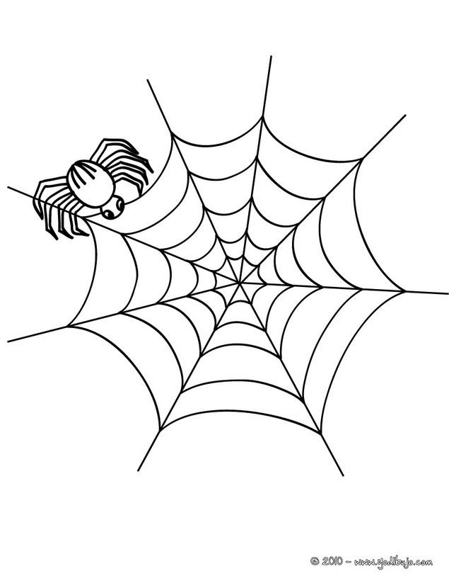 Dibujos para colorear araña fabricando su telaraña para halloween