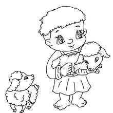 Dibujo para colorear un niño pastor con corderos - Dibujos para Colorear y Pintar - Dibujos para colorear FIESTAS - Dibujos para colorear de NAVIDAD - Dibujos para colorear de NAVIDAD NACIMIENTO - Dibujos del PORTAL DE BELEN navideño para colorear