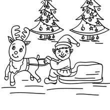 Dibujo para colorear reno y ayudante de santa claus - Dibujos para Colorear y Pintar - Dibujos para colorear FIESTAS - Dibujos para colorear de NAVIDAD - Dibujos de AYUDANTES DE NAVIDAD para colorear