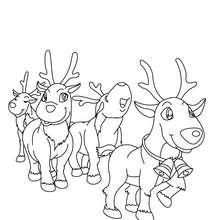 Dibujo para colorear tiro de renos navideños - Dibujos para Colorear y Pintar - Dibujos para colorear FIESTAS - Dibujos para colorear de NAVIDAD - Colorear dibujos RENOS NAVIDEÑOS