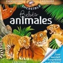 Libro : Bebés animales
