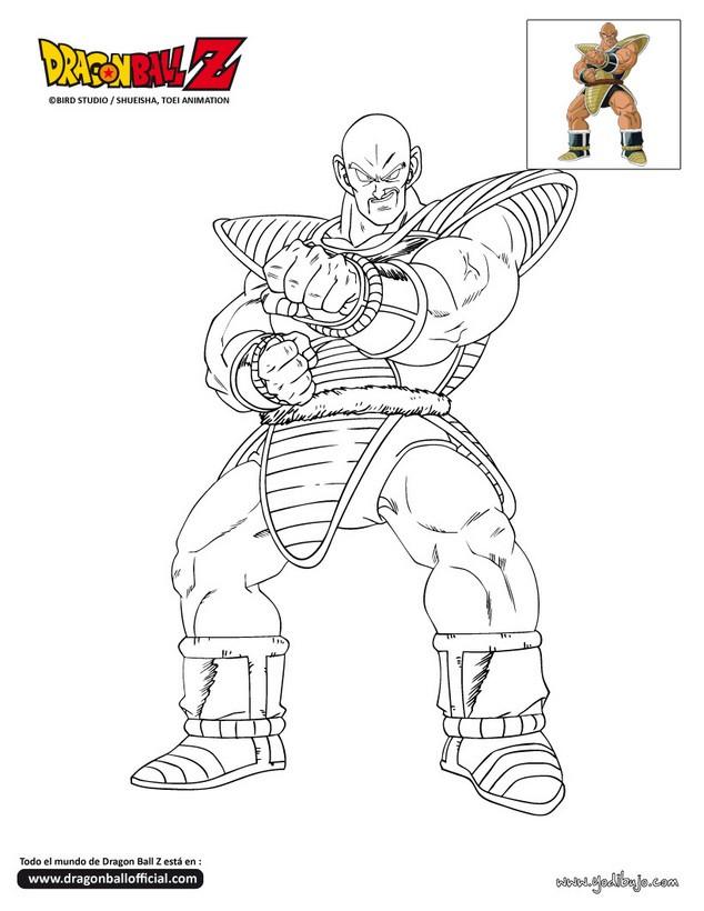 Dibujos para colorear napa  eshellokidscom