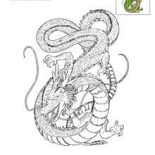 Dibujos para colorear shenron - Dragon ball z site officiel ...