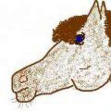 Dibujos de ANIMALES - Dibujos de NIÑOS - Dibujar Dibujos