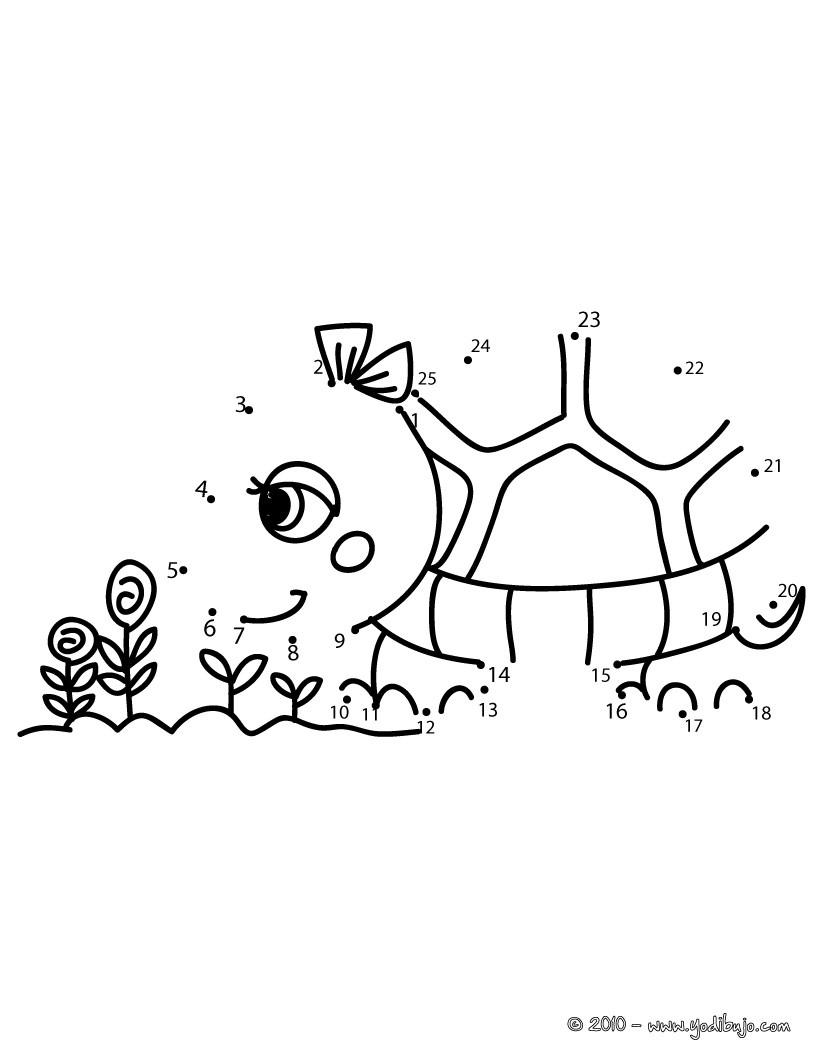 Tortuga : Dibujos para Colorear, Videos y Tutoriales, Lecturas ...