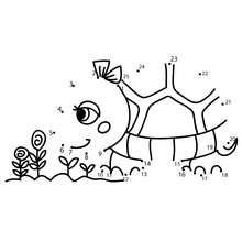 Unir puntos TORTUGA - Juegos divertidos - Juegos de UNIR PUNTOS - Juegos de puntos ANIMALES