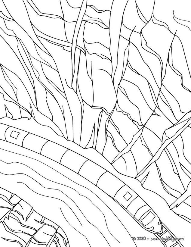 Ferrocarril : Dibujos para Colorear, Videos y Tutoriales, Lecturas ...