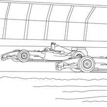 carrera de coches de FORMULA 1