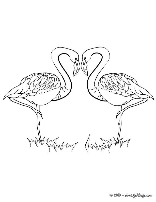 Dibujos para colorear corazones y flamingos  eshellokidscom