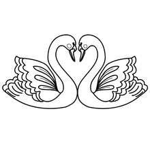Dibujo para colorear : Corazón de cisnes