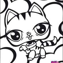 GATO littlest pet shop