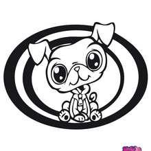 Dibujo para colorear : PERRO  littlest pet shop