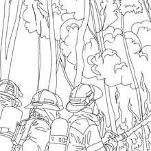 Dibujo de un grupo de bomberos con la manguera de agua para apagar el incendio - Dibujos para Colorear y Pintar - Dibujos para colorear PROFESIONES Y OFICIOS - Dibujos de BOMBEROS para colorear