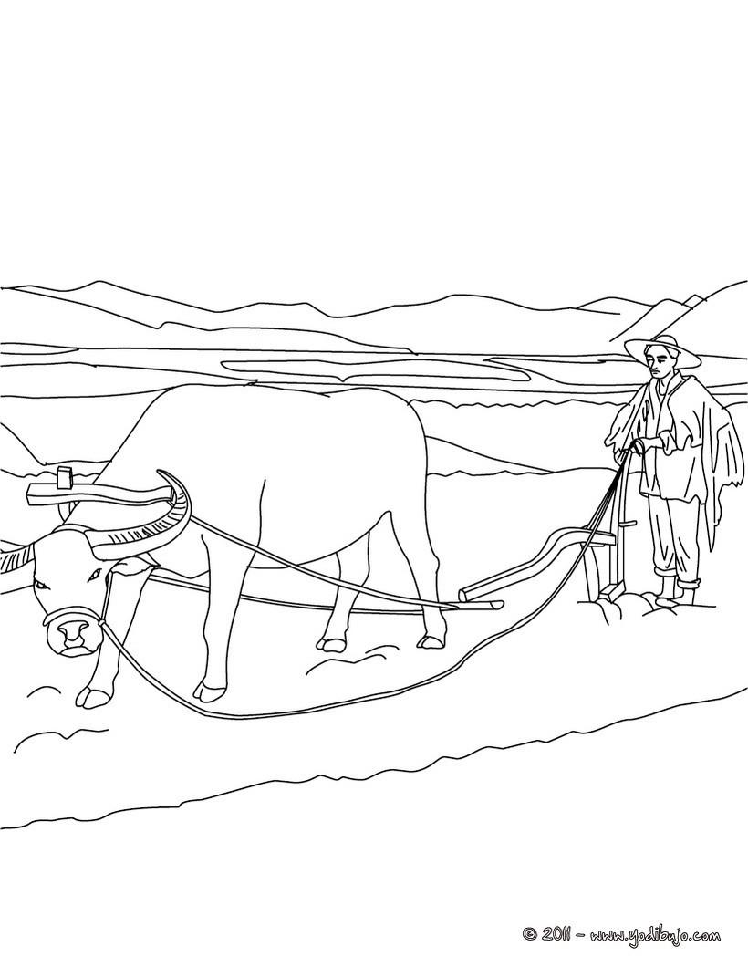 Dibujo para colorear : un agricultor cultivando en el campo