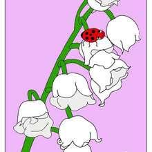Dibujo de un ramo de flores para el dia de la madre