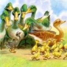 La familia feliz - Lecturas Infantiles - Cuentos infantiles - Cuentos clásicos - Los cuentos de Andersen